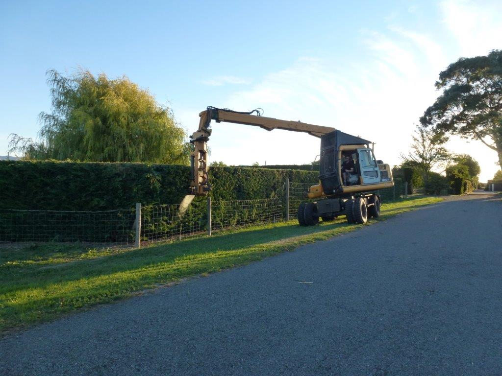 Blenheim Hedge Trimming