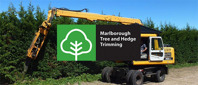 Marlborough Tree and Hedge Trimming